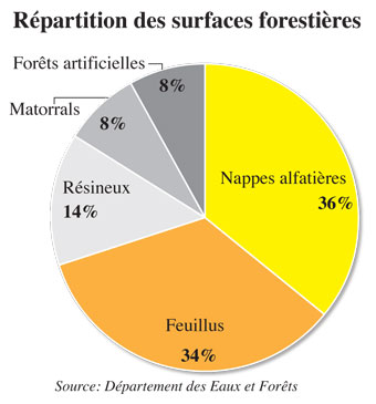 surfaces-forestieres-009.jpg