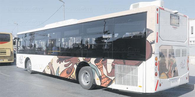 tamesna-bus-00.jpg