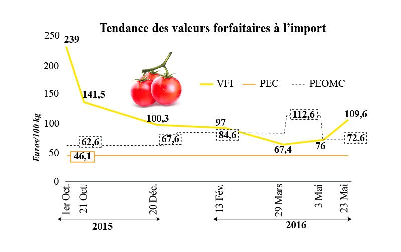 tomates_4816.jpg