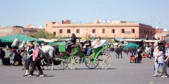 tourisme-marrakech-086.jpg