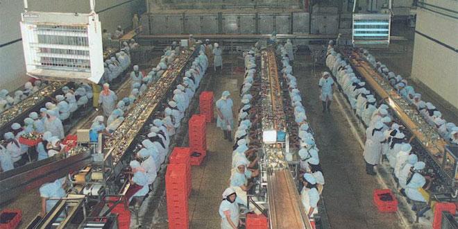 usine-conserve-098.jpg