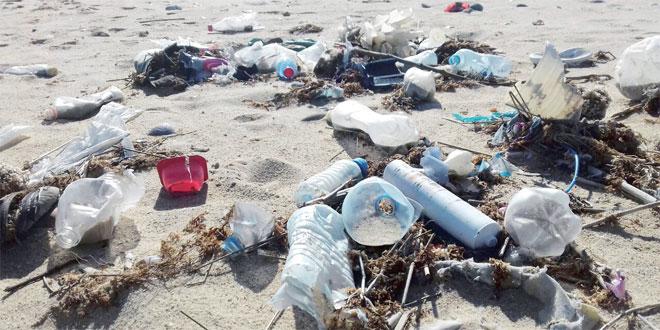 Plages propres : La lutte contre le plastique s'organise