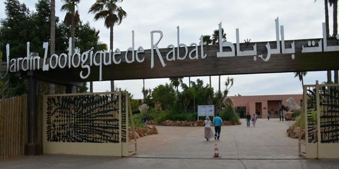 Naissances au zoo de Rabat