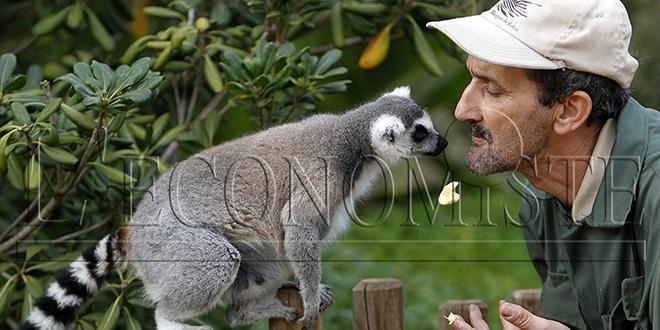 Plus de 150 naissances au Zoo de Rabat